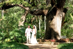 Washington-Oaks-Wedding-Elephant-Oak-Tree-scaled